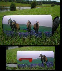 Six horses painted on Standard T1 Size mailbox.  Us Postmaster General Approved.  Sealed with several coats of polyurethane to withstand the elements.  Custom orders accepted.  $136.00 plus $30.00 shipping