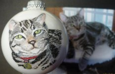 Calico cat portraits painted on Christmas ornaments are great gifts!  Send in your photos!