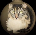 Cat pet portrait painted on Christmas Ornament